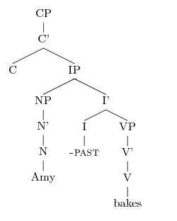 Drawing sentence syntax trees amy reynolds note ccuart Images