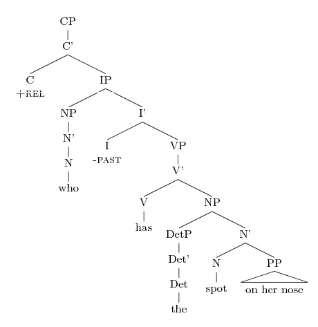 Drawing question syntax trees amy reynolds we ccuart Image collections